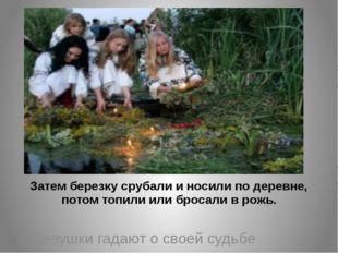 Затем березку срубали и носили по деревне, потом топили или бросали в рожь.