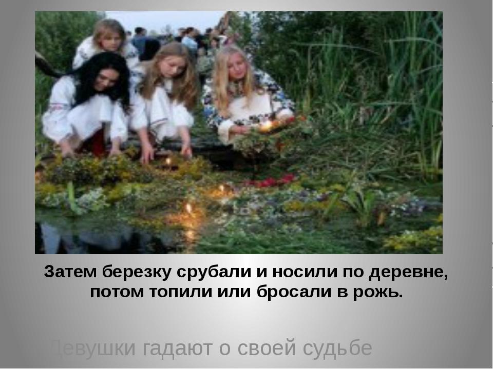 Затем березку срубали и носили по деревне, потом топили или бросали в рожь....