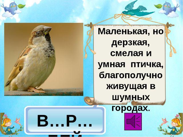 В…Р…БЕЙ Маленькая, но дерзкая, смелая и умная птичка, благополучно живущая в...