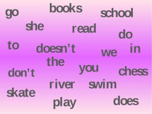 don't doesn't she read books go to school we do does play chess you skate swi