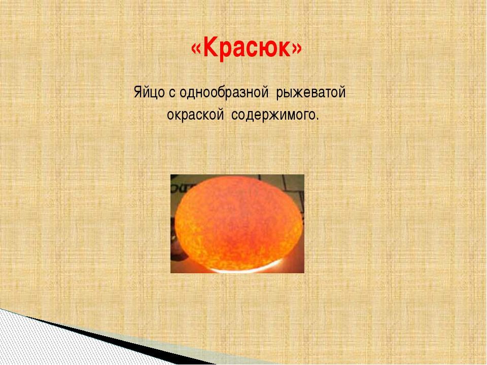 Яйцо с однообразной рыжеватой окраской содержимого. «Красюк»