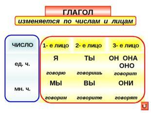 ГЛАГОЛ изменяется по числам и лицам ЧИСЛО 1- е лицо 2- е лицо  3- е лицо е