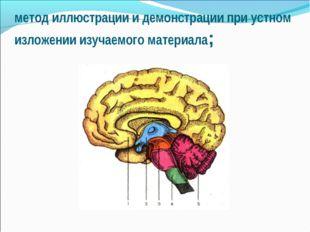 метод иллюстрации и демонстрации при устном изложении изучаемого материала;