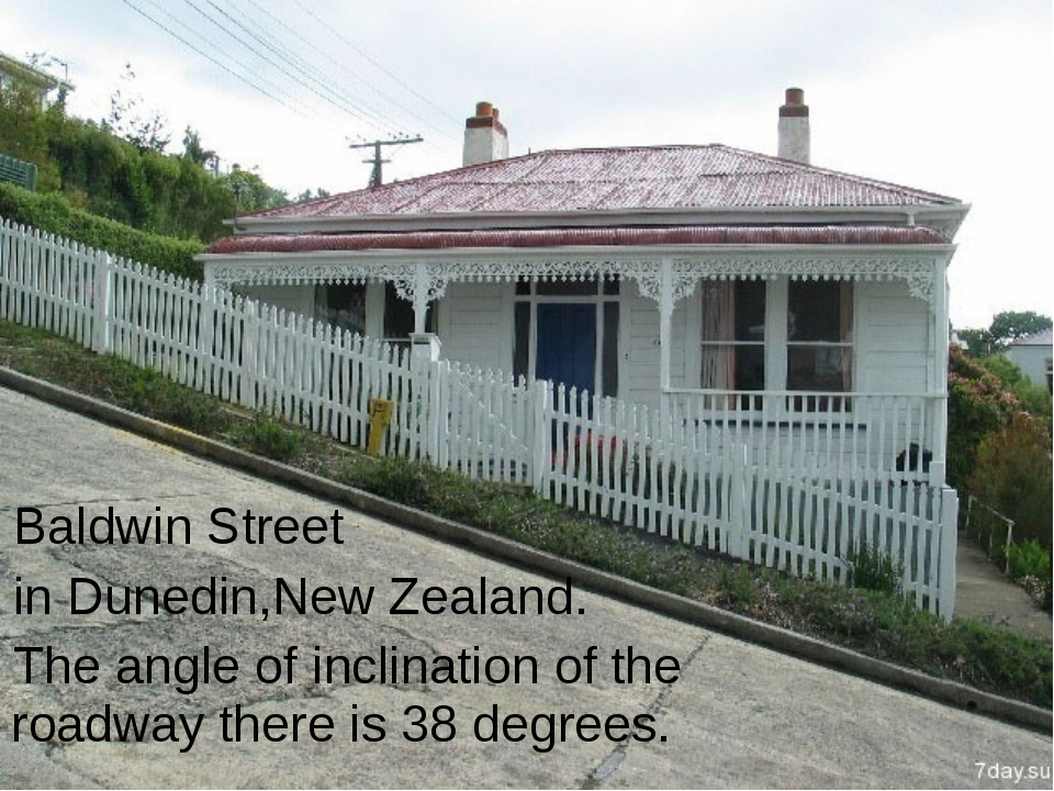 Baldwin Street in Dunedin,New Zealand. The angle of inclination of the roadwa...