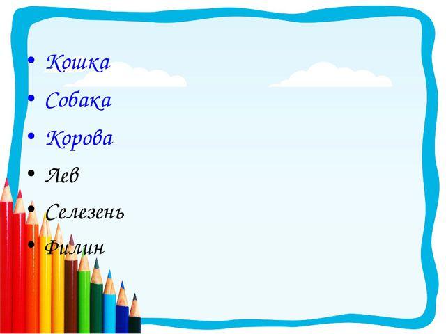 Кошка Собака Корова Лев Селезень Филин