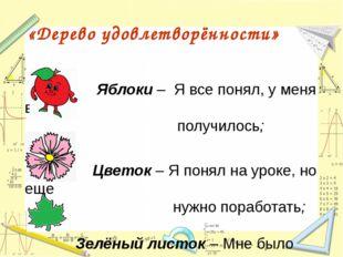 Яблоки – Я все понял, у меня все получилось; Цветок – Я понял на уроке, но е