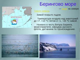 Берингово море Бе́рингово мо́ре — море на севере Тихого океана. Зимой покрыто