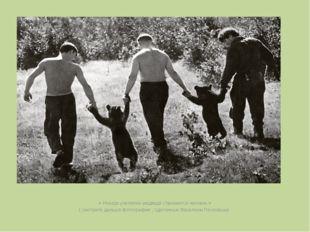 « Иногда учителем медведя становится человек.» ( смотрите дальше фотографии