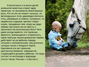 В воспитании и в жизни детей домашние животные играют едва заметную, но несо