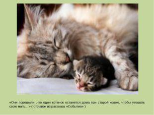 «Они порешили ,что один котенок останется дома при старой кошке, чтобы утешат