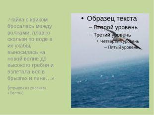 «Чайка с криком бросалась между волнами, плавно скользя по воде в их ухабы,