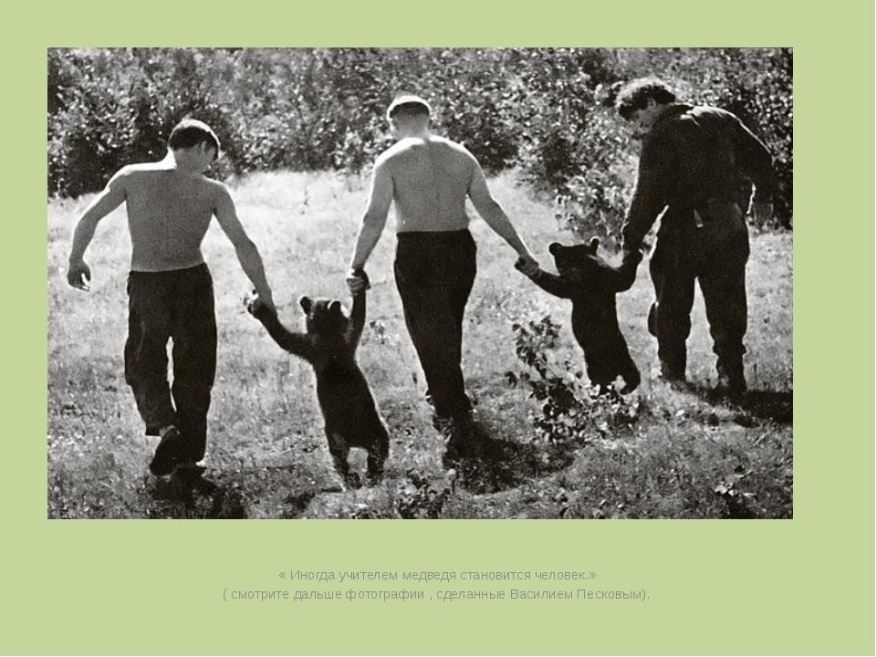 « Иногда учителем медведя становится человек.» ( смотрите дальше фотографии...