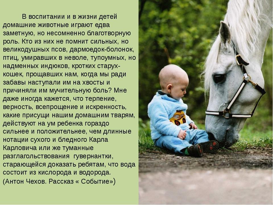 В воспитании и в жизни детей домашние животные играют едва заметную, но несо...