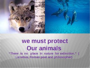 """we must protect Our animals """"There is no place in nature for extinction."""" ("""