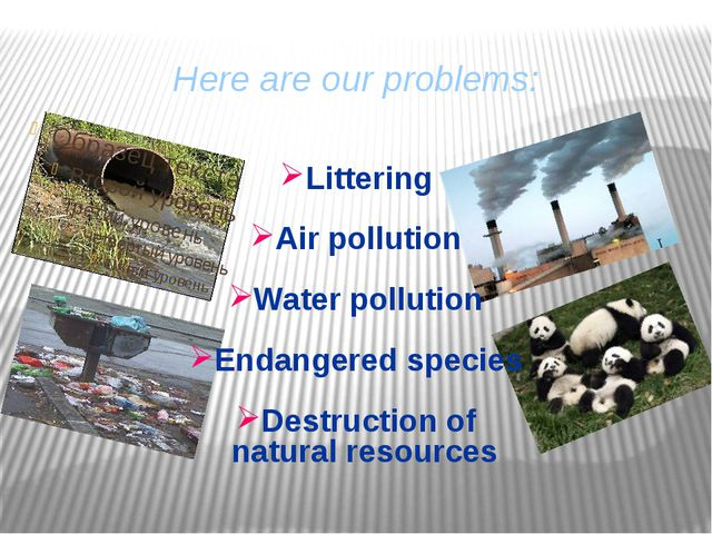 Here are our problems: Littering Air pollution Water pollution Endangered spe...