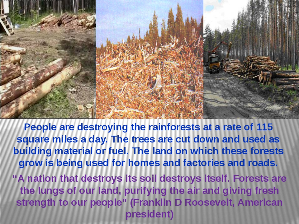 """""""A nation that destroys its soil destroys itself. Forests are the lungs of ou..."""