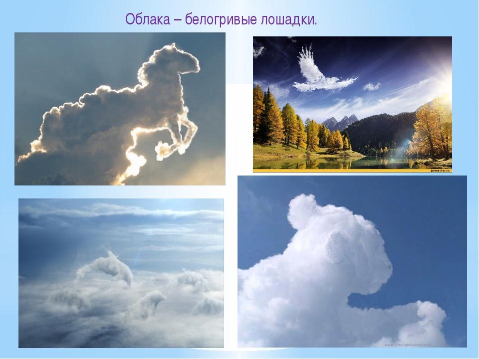 Облака – белогривые лошадки.