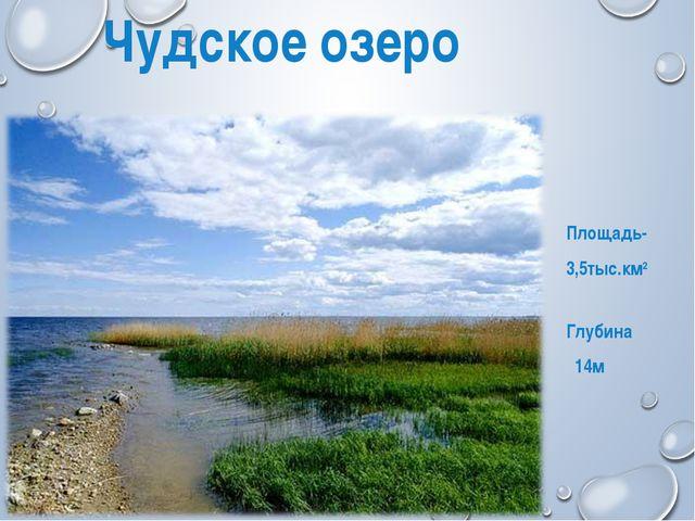 Чудское озеро Площадь- 3,5тыс.км2 Глубина 14м