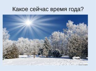 Какое сейчас время года?
