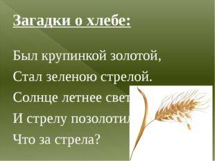 Загадки о хлебе: Был крупинкой золотой, Стал зеленою стрелой. Солнце летнее с