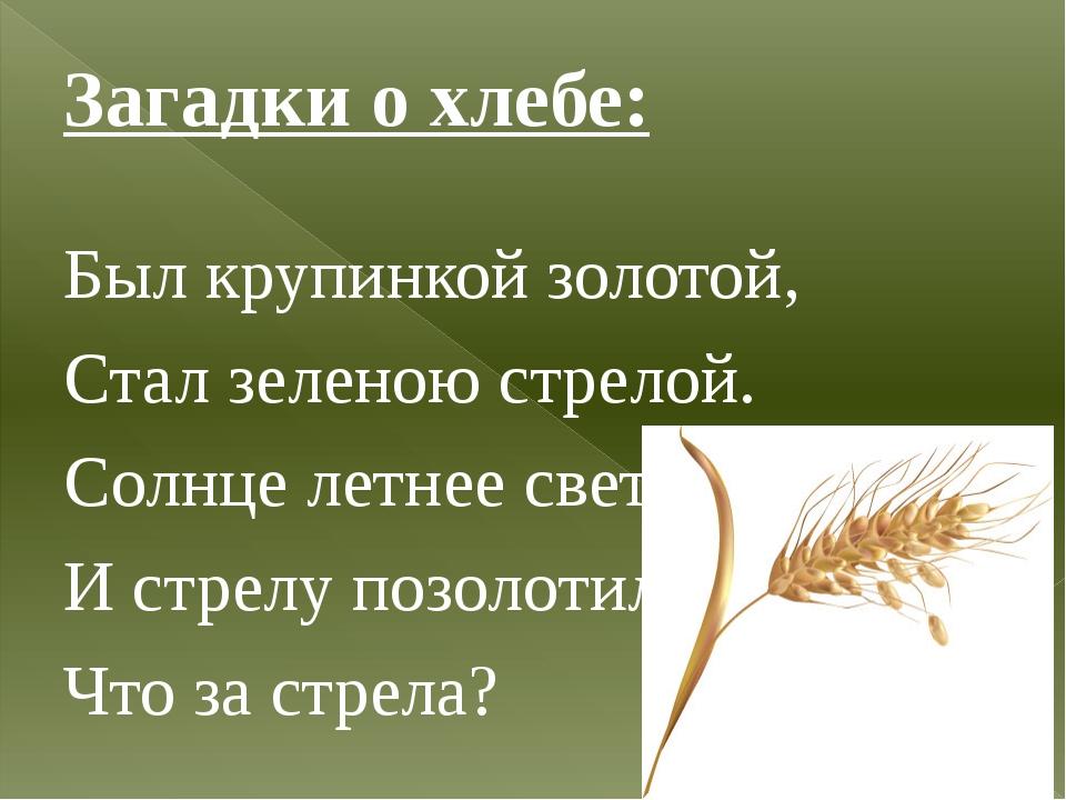 Загадки о хлебе: Был крупинкой золотой, Стал зеленою стрелой. Солнце летнее с...