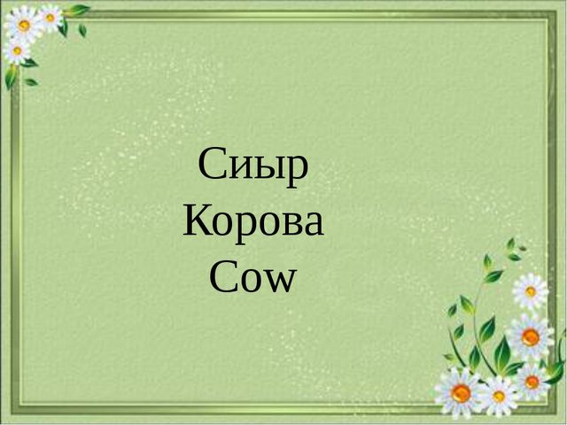 Сиыр Корова Cow