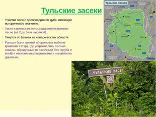 Тульские засеки Участки леса с преобладанием дуба, имеющие историческое значе