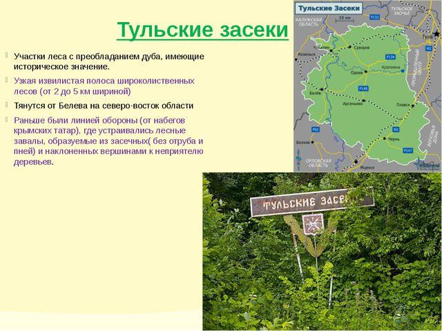 Тульские засеки Участки леса с преобладанием дуба, имеющие историческое значе...