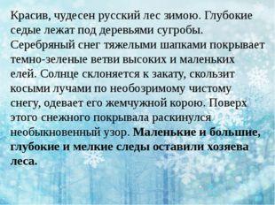 Красив, чудесен русский лес зимою. Глубокие седые лежат под деревьями сугробы