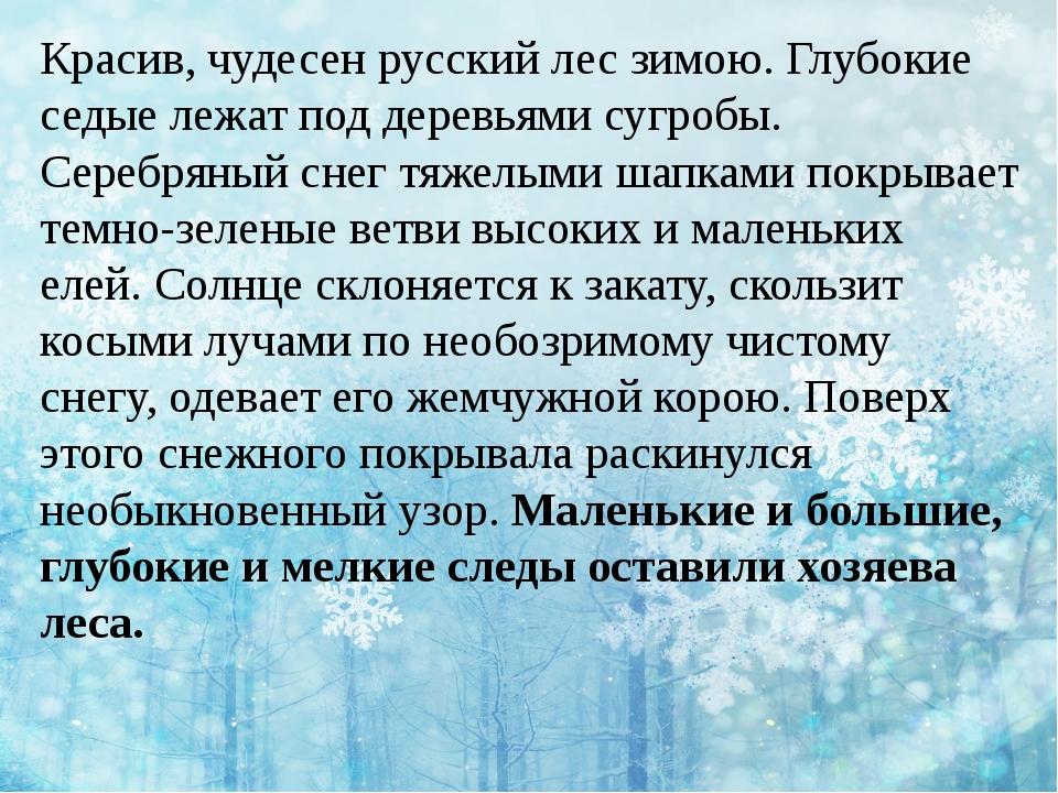 Красив, чудесен русский лес зимою. Глубокие седые лежат под деревьями сугробы...