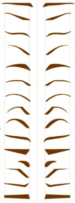 F:\БАБУШКА\eyebrows1.jpg