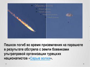 Пешков погиб во время приземления на парашюте в результате обстрела с земли б