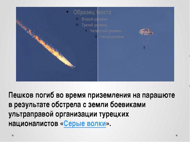 Пешков погиб во время приземления на парашюте в результате обстрела с земли б...