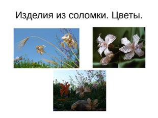 Изделия из соломки. Цветы.