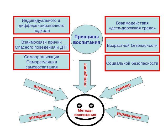 Принципы воспитания Индивидуального и дифференцированного подхода Взаимосвязи...