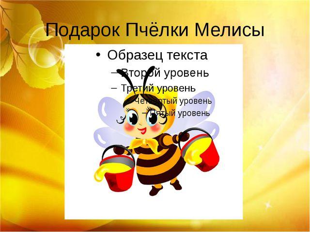 Подарок Пчёлки Мелисы