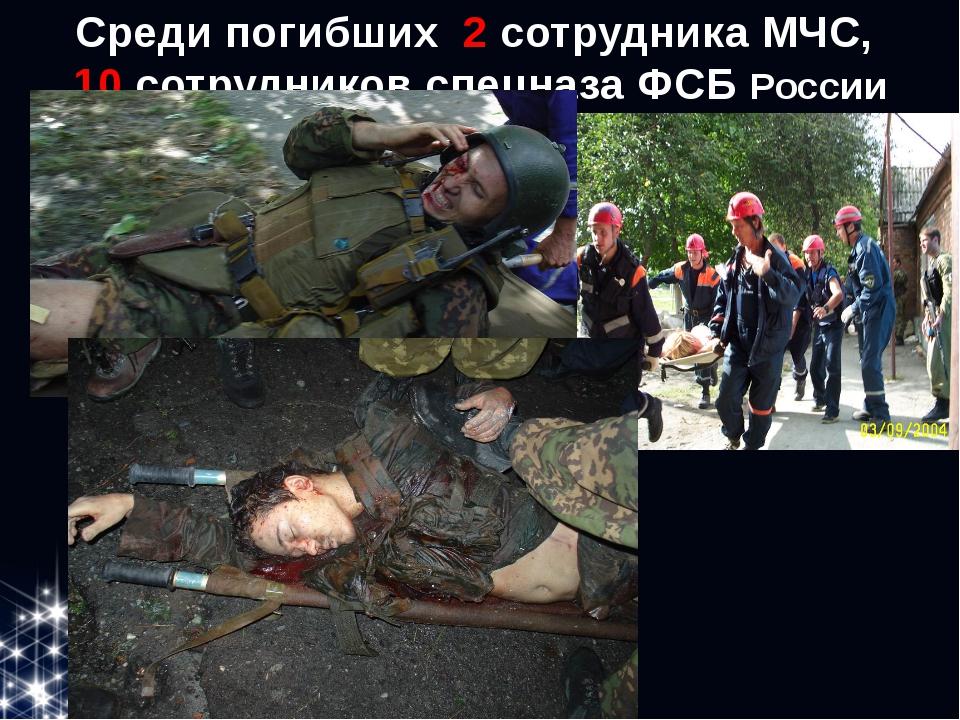 Среди погибших 2 сотрудника МЧС, 10 сотрудников спецназа ФСБ России