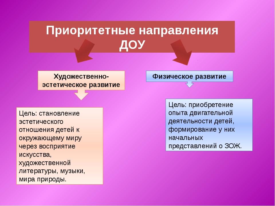 Приоритетные направления ДОУ Художественно-эстетическое развитие Физическое...