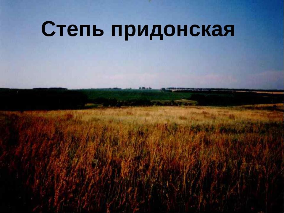 Степь придонская