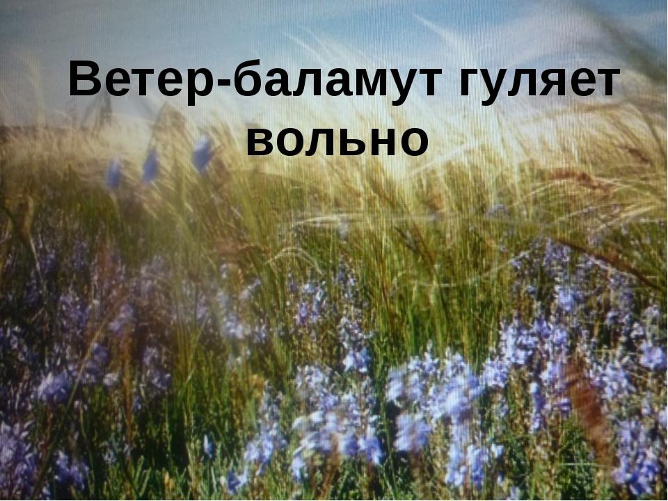 Ветер-баламут гуляет вольно