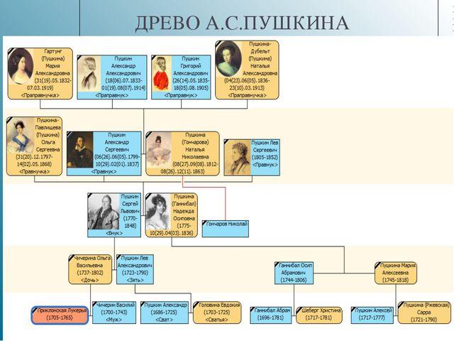 ДРЕВО А.С.ПУШКИНА