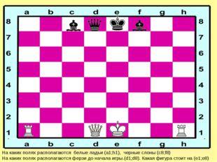 На каких полях располагаются белые ладьи (а1;h1), черные слоны (с8;f8) На как
