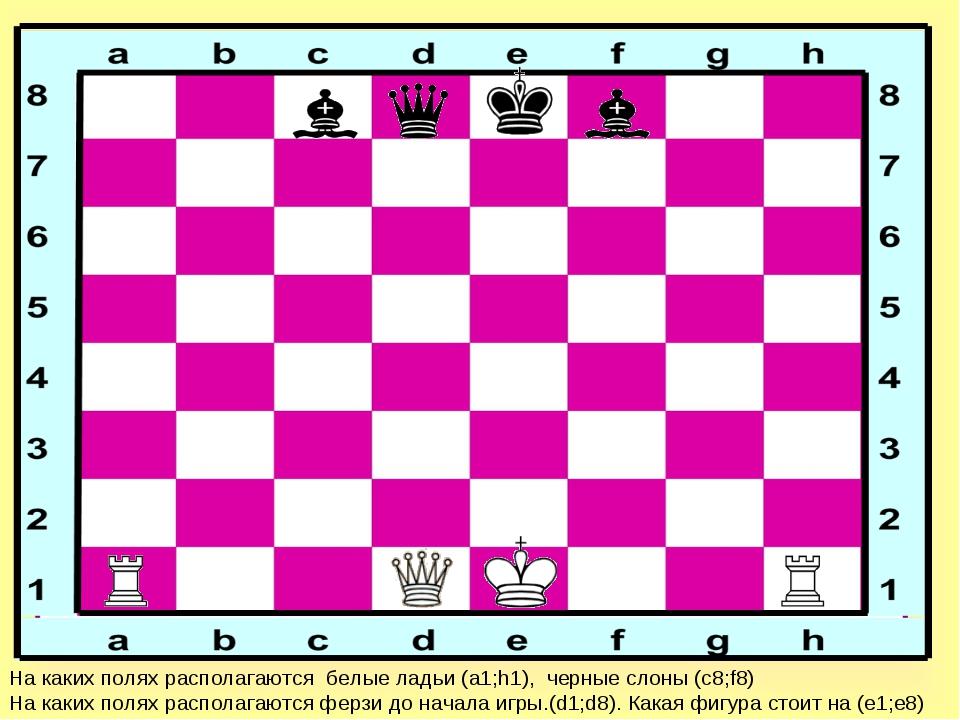 На каких полях располагаются белые ладьи (а1;h1), черные слоны (с8;f8) На как...