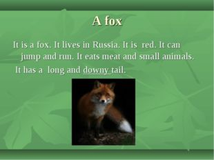A fox It is a fox. It lives in Russia. It is red. It can jump and run. It eat