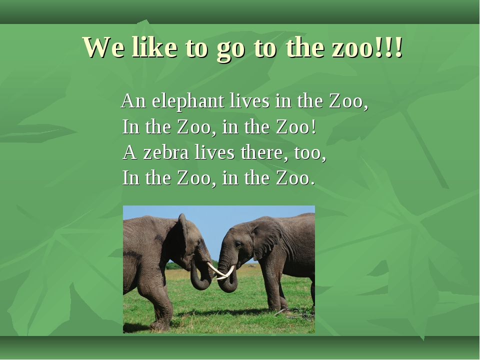 We like to go to the zoo!!! An elephant lives in the Zoo, In the Zoo, in the...