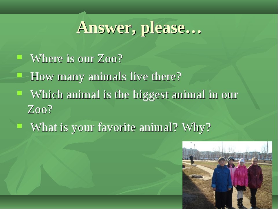 Answer, please… Where is our Zoo? How many animals live there? Which animal i...