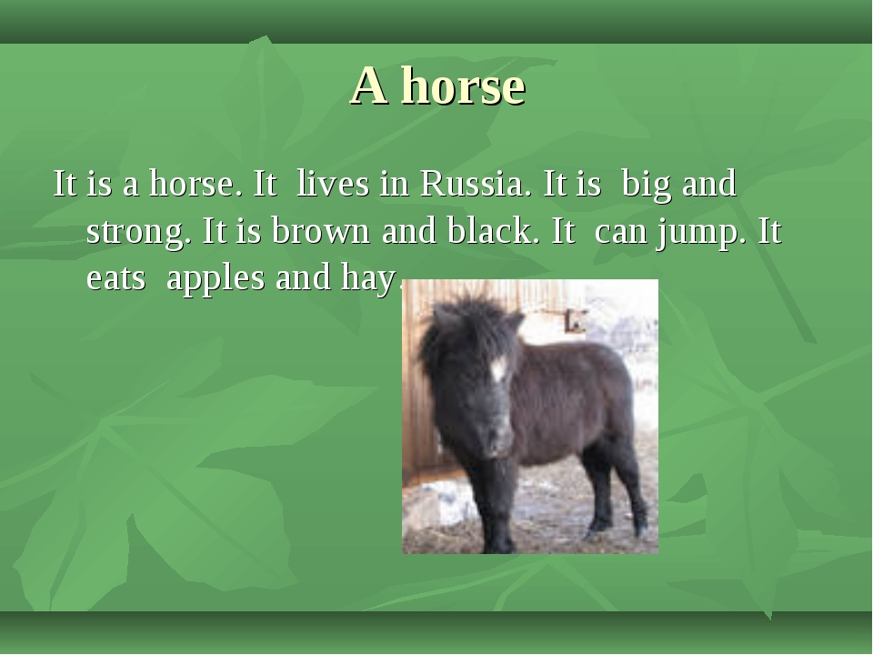 A horse It is a horse. It lives in Russia. It is big and strong. It is brown...