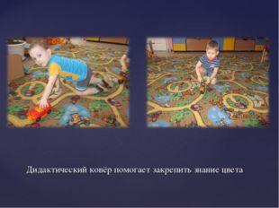 Дидактический ковёр помогает закрепить знание цвета