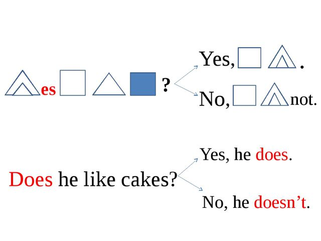 es ? Yes, . No, not. Does he like cakes? Yes, he does. No, he doesn't.