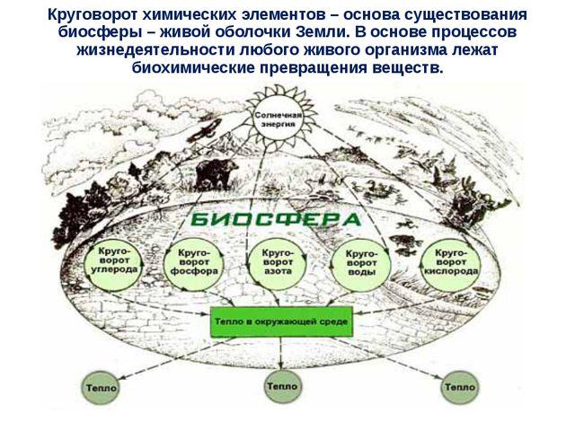 Круговорот химических элементов – основа существования биосферы – живой оболо...